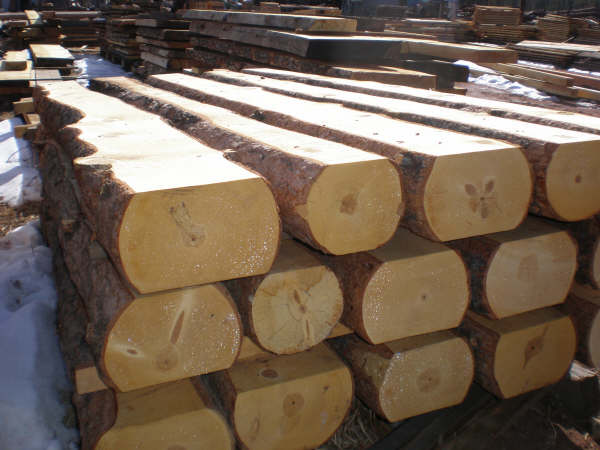 Casey S Lumber